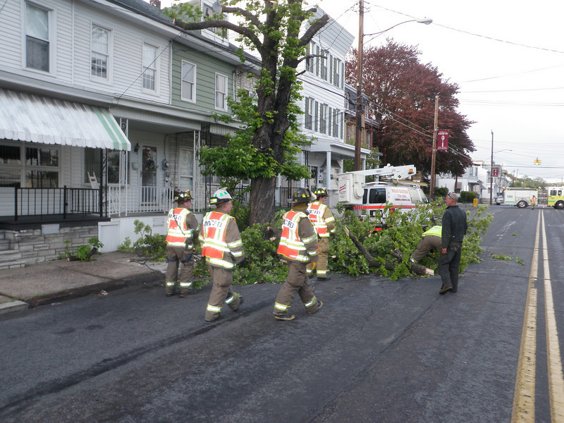 mahanoy city tree incident 5-8-2010 020.JPG