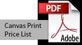 Canvas Print Price List