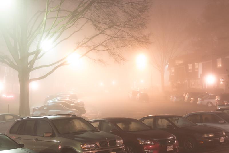 Fog_20151229_8.jpg