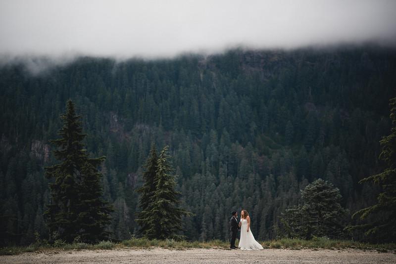 Travel Adventure Wedding Photographer - Mt Rainier - Rose-29.jpg