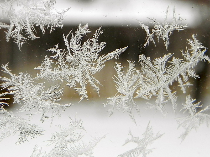 2011/1/4 - I love frost and snow flakes. When I woke up my wife pointed out the frost on our bedroom window. The wood fence at the back of the yard created the ideal backdrop to create contrast for the feathery features of the frost. For me  a personally rewarding shot.