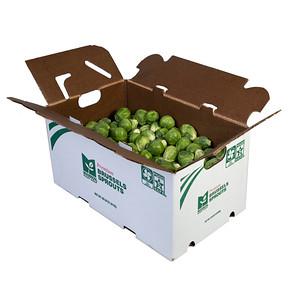Ippolito Produce Shoot 9-13-21