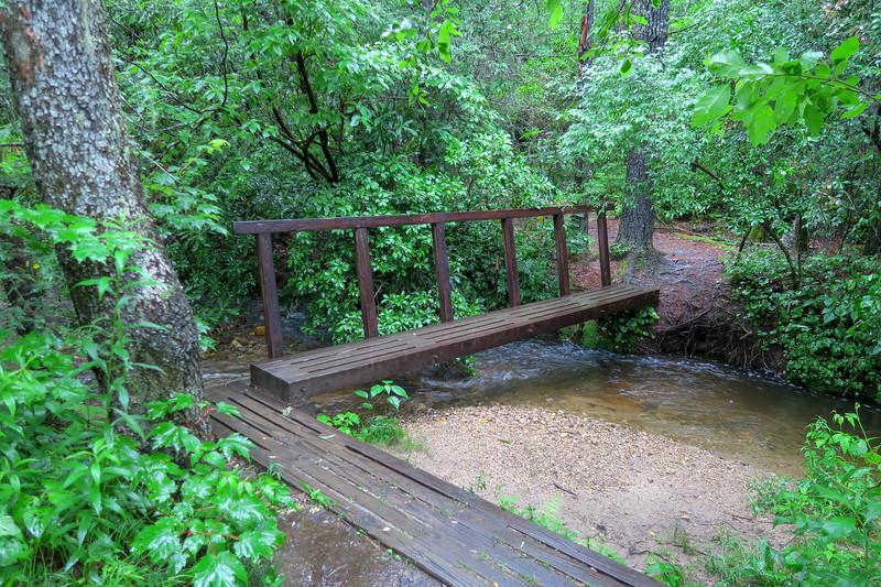 Pink Beds Loop Trail @ Bearwallow Brook -- 3,230'
