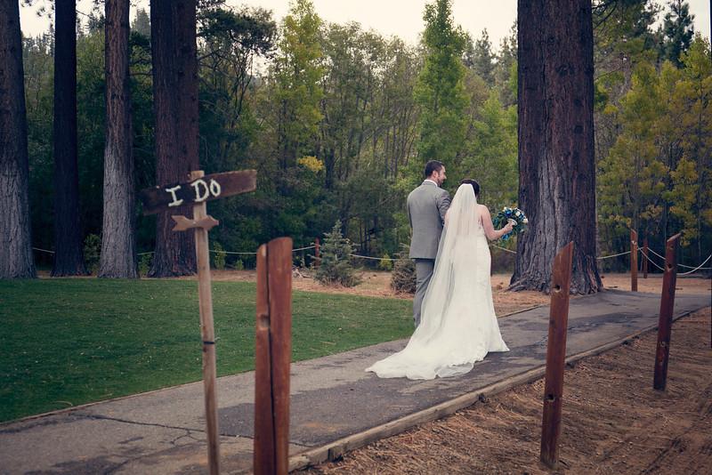 northern-california-wedding-forest.jpg
