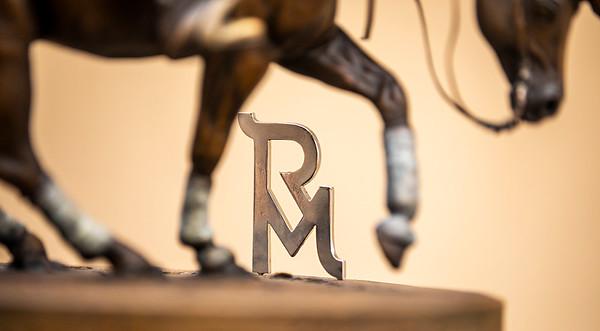 RM Bronze