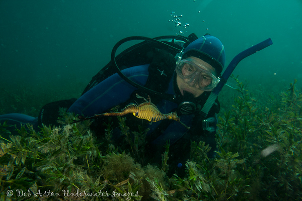 Glenys Greenwood with Weedy Seadragon