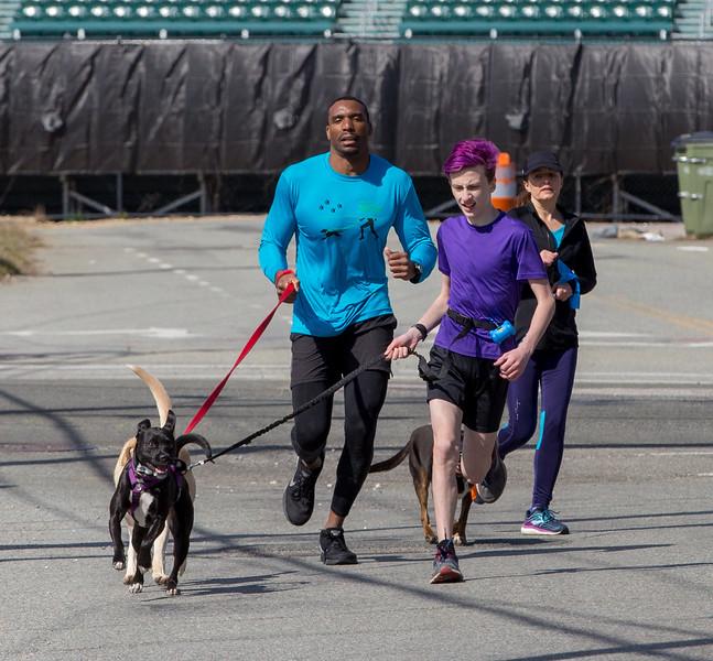 Richmond Spca Dog Jog 2018-642.jpg