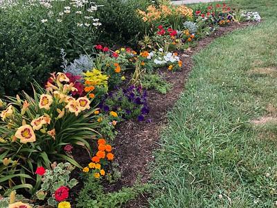 2020_07_17 Town Center Flower Garden