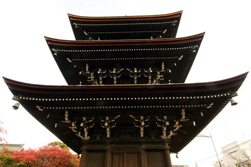 Japan_2010_NAT9368.jpg