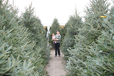December 1, 2007 - Emily picking out her first Christmas Tree.