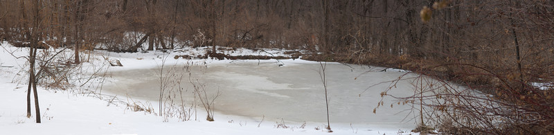 Upper pond, Jan 2011
