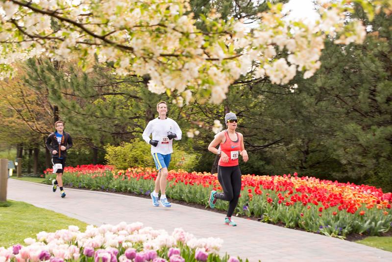 TulipFestHalfMarathon_Runners_Gardens_2015_IMG_4662.jpg