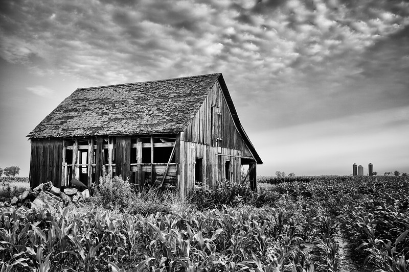 IL Farm House bw.jpg