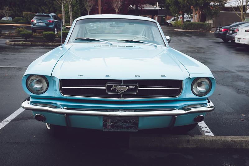 FujiX100T_Mustang.jpg