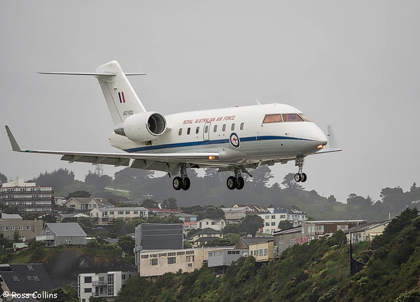 RAAF Bombardier CL604 Challenger at Wellington 2018