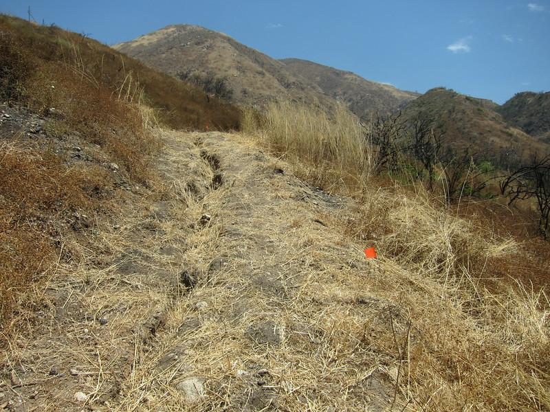 20100709001-Doc Larsen Trailwork Planning.JPG