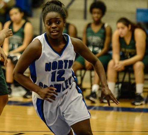 Basketball Girls JV vs  Arlington Colts 12-13-13-13 - Copy