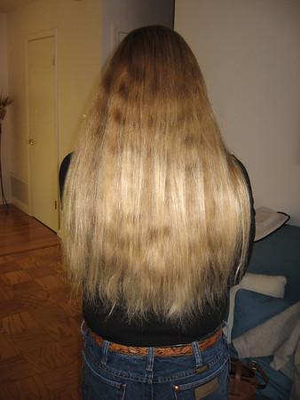 Lisa's Hair cut