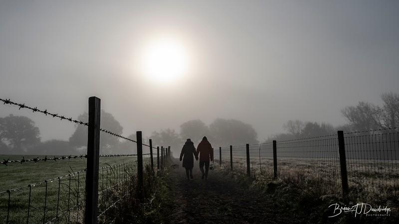 Hassocks in the mist-5448.jpg