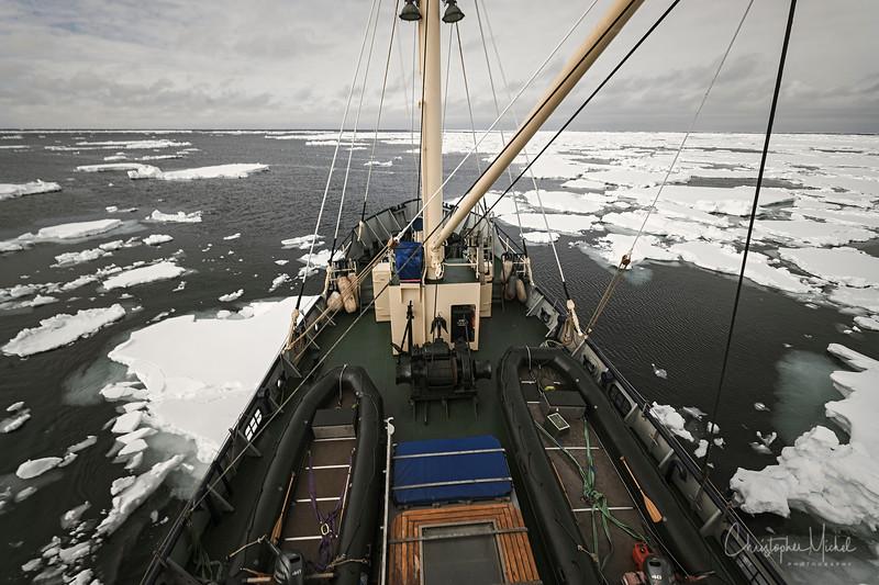 5-24-17014770ndw spitsbergen.jpg