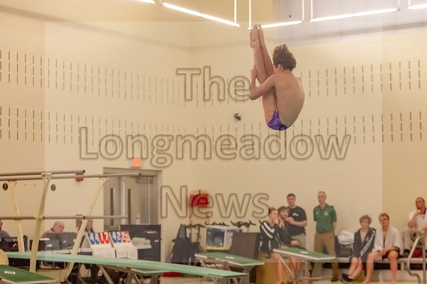 Longmeadow Swimming and Diving 1-24-20