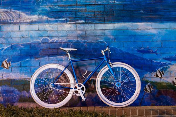 State Bicycle Co. - Tsunami