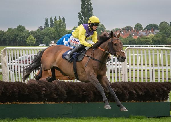 Race 6 - Mercian Prince