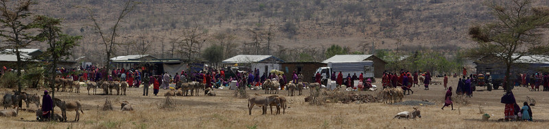 2007-Tanzania - Safari