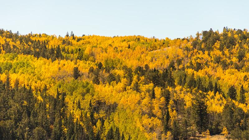 Colorado19_5D4-1130.jpg