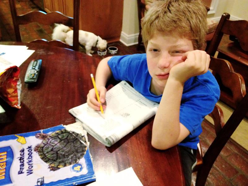 Harry loves homework.