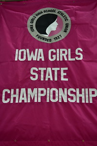 Iowa Girls State Swimming and Diving Meet 2020