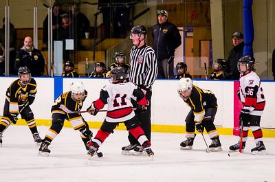 Game 8 - Berkshire Bruins @ Troy/Albany White 10U