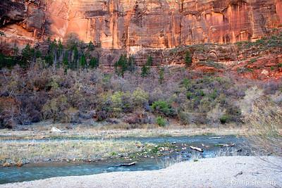 Zion Canyon 2010