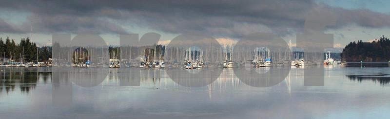 Swantown Marina & Olympic Mts. 8803.jpg