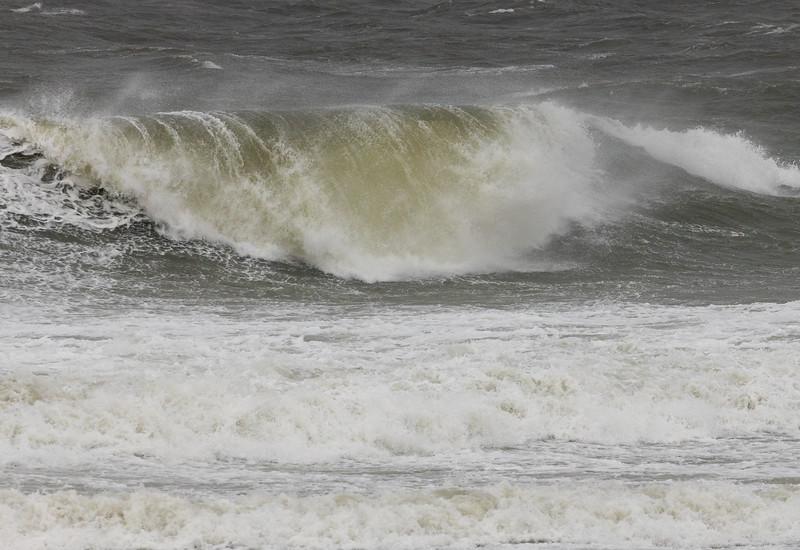 190906_196_MD_OC_Surf-1.jpg