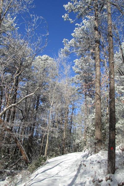 Rainbow Falls Trail -- 2,880'