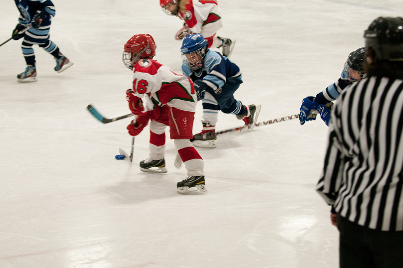 2012-02-19 Mite A vs Wizards Tier 2 State Final