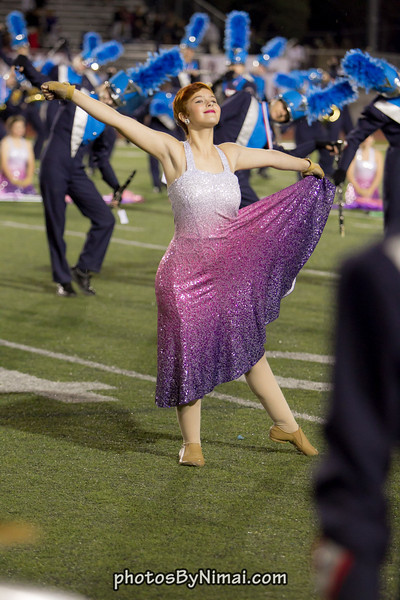 WHS_Band_vs_AHS_2013-11-08_8323.jpg