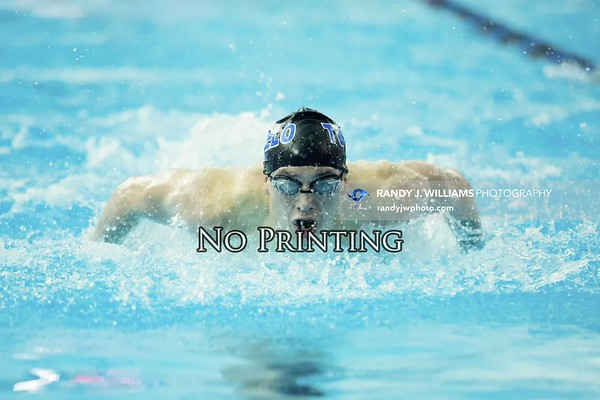 MHSAA Swimming Championship