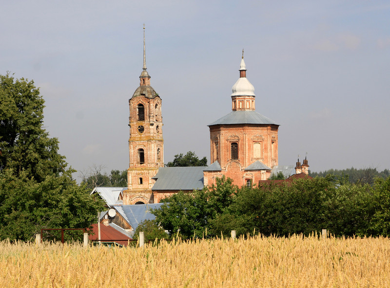 Suzdal - Borisoglebskaya church, seen across wheat fields from the Museum of Wooden Architecture and Peasant Life.