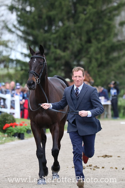 oliver-townend_mhs-king-joules_7604.JPG