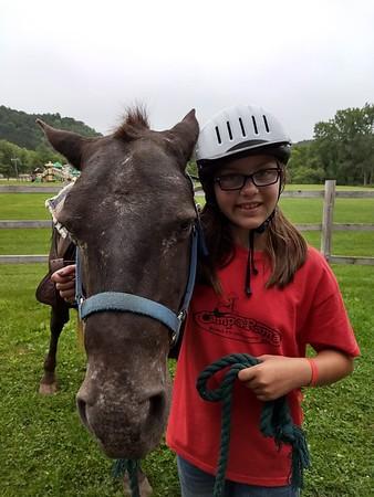 FM3 Horse Indivs