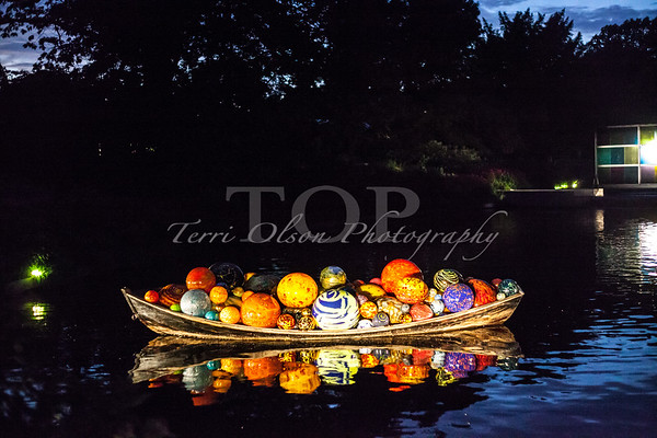 Chihuly - night at Botanical Gardens