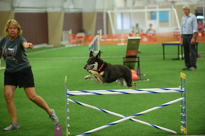 Schooley's Mountain Kennel Club AKC Agility Trial July 30-31