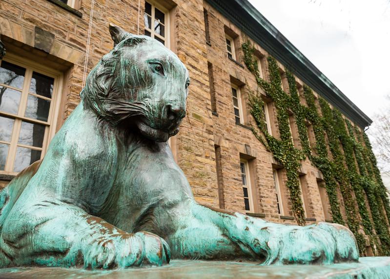 Princeton U_Ivy 4-15-2017-4532.jpg