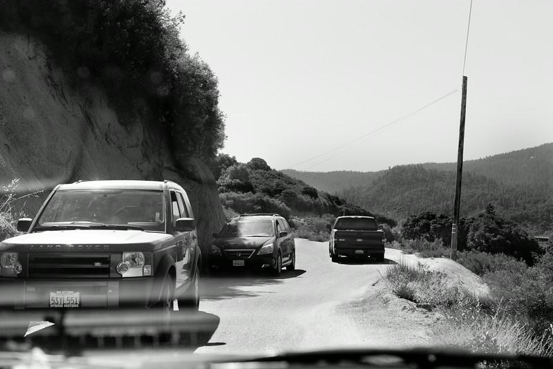 Sequoia_0021.jpg