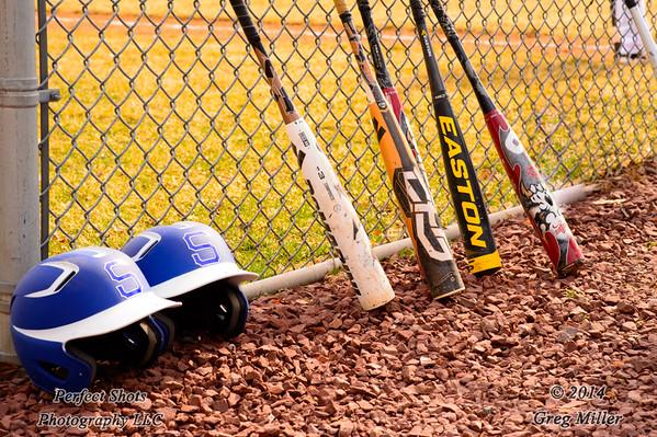 Baseball ----- ( 2014 )