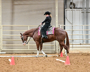 Youth Walk-Trot Trail Level 1