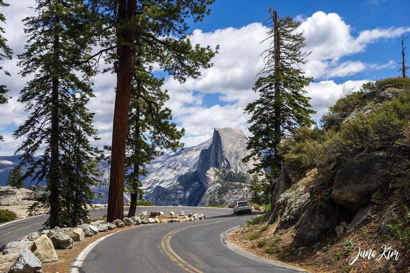05.2021_Yosemite__DSC7478-Juno Kim-2000.jpg
