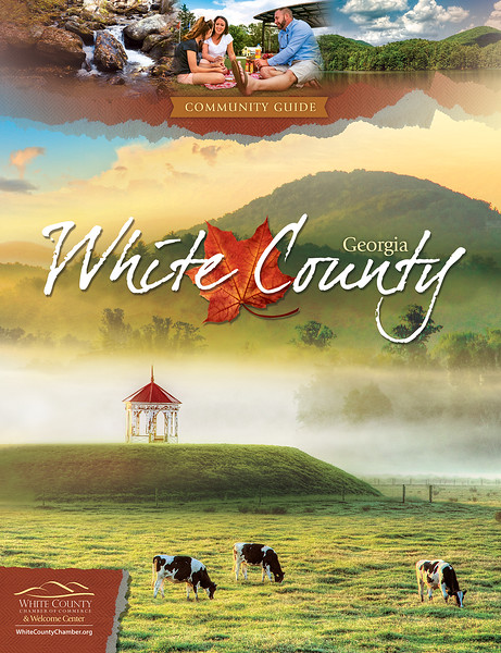 White County NCG 2017 - Cover (3).jpg
